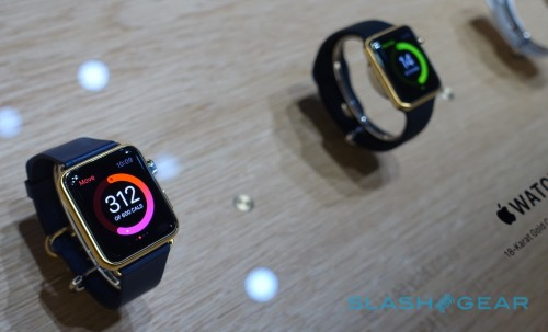 Apple Watch: by the (unofficial) numbers