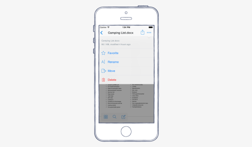 How to rename a Dropbox file or folder using the iOS app