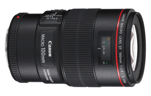 Canon EF 100mm f/2.8L Macro IS USM Lens Review