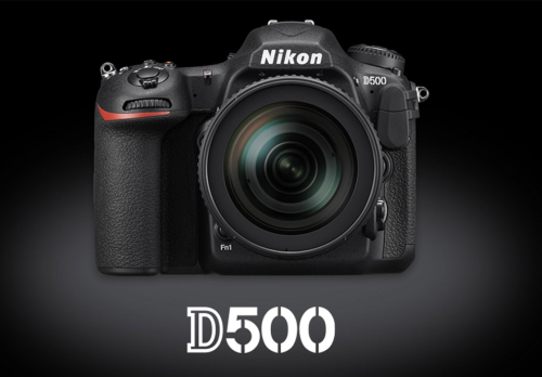 Nikon D500 vs D610 vs D750 vs Canon 5D Mark III Comparison