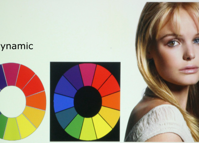 Epson-955WH-Color-Wheet-Dynamic