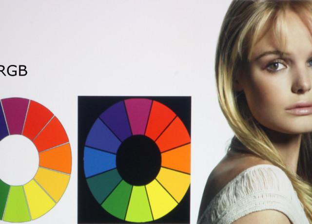 Epson-955WH-Color-Wheet-sRGB