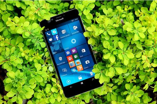 Windows 10 Mobile Isn't Dead Until a Surface Phone Flops