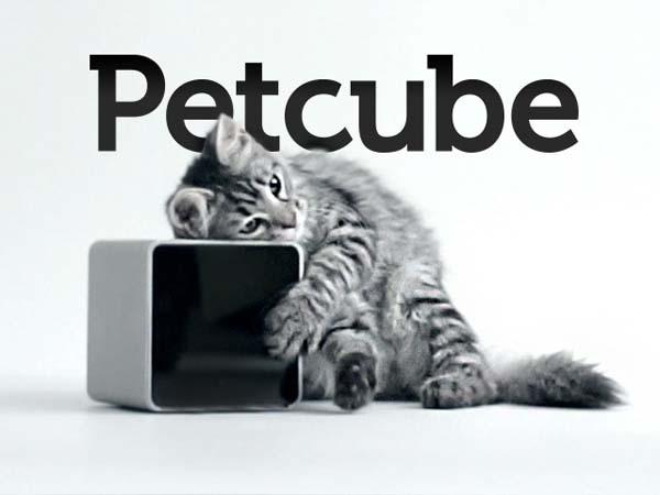 petcube_keeps_your_pet_from_being_lonely