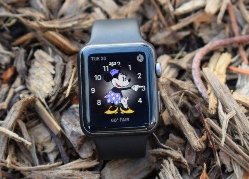 Apple Watch guide : How to navigate your first hour