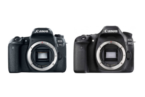 Canon 77D vs Canon 80D Specifications Comparison