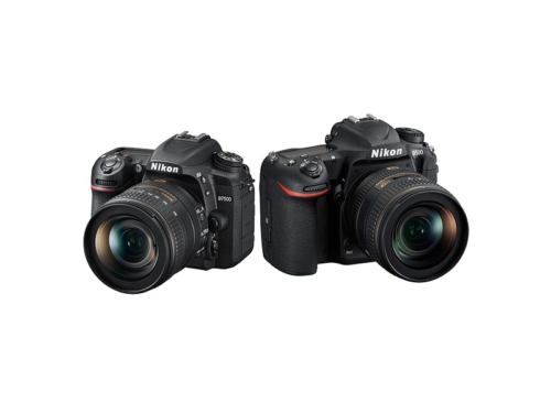 Nikon D7500 vs Nikon D500 : Which is better for you?