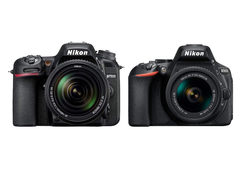Nikon D7500 Vs D5600 Comparison Gearopen