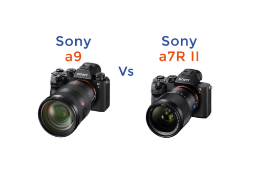 Alpha-better: Sony a9 vs a7R II