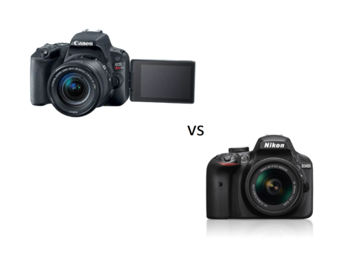 Entry-level DSLRs compared: Canon EOS Rebel SL2 vs Nikon D3400