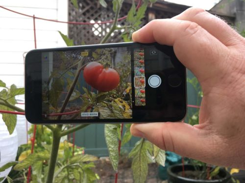 iOS 11 Camera Guide: All the New Features and How to Use Them