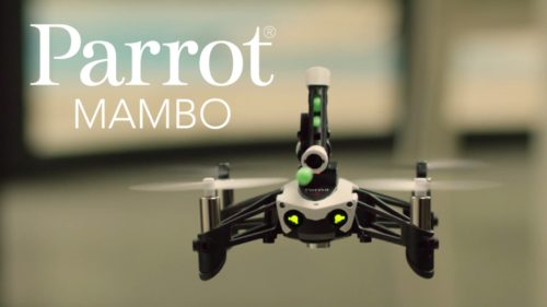 Parrot Mambo Review