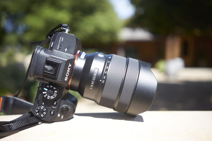 Sony FE 12-24mm F4 G Review
