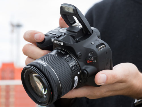 Canon EOS Rebel SL2 Review: Small on Size, Big on Image Quality
