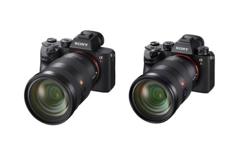 Sony A7R III vs Sony A9 – Comparison