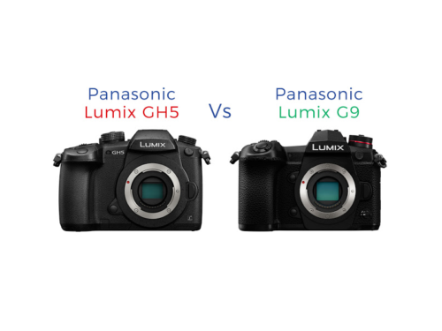 PANASONIC LUMIX G9 vs LUMIX GH5 Comparison Review
