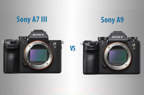 Sony A7 III vs A9 – The 10 Main Differences