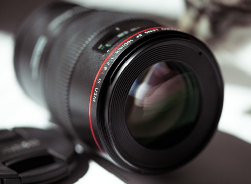 Best Macro Lenses for Canon DSLRs
