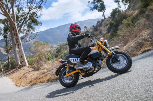 2019 Honda Monkey Review: Hey! Hey! It's The Monkey! (14 Fast Facts)