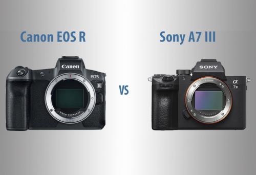 Canon EOS R vs Sony A7 III – The 10 Main Differences