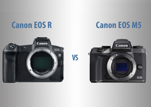 Canon EOS R vs EOS M5 – The 10 Main Differences