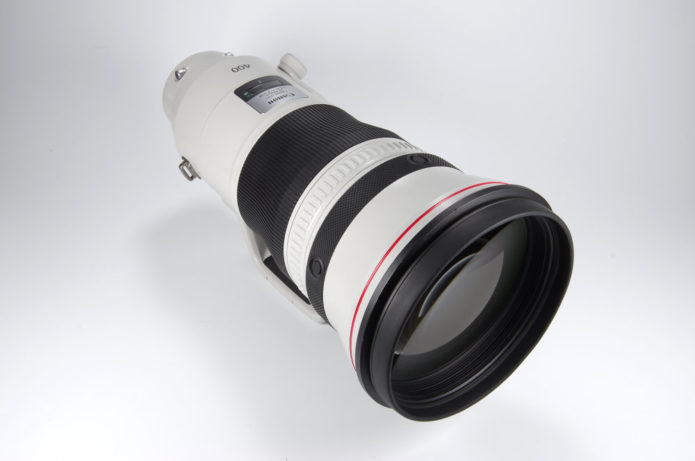 Canon EF 400mm f/2.8 IS III Lens Review