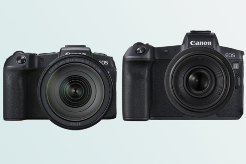 Canon EOS RP vs Canon EOS R: which should you buy?