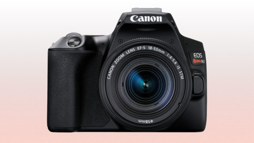 Canon EOS Rebel SL3 vs Nikon D3500 – Comparison