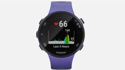 Garmin Forerunner 45 and 45S incoming as pictures and details leak out
