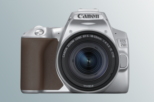 Canon's 250D is a beginner-friendly DSLR with 4K video
