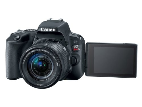 The Canon EOS Rebel SL3 is a DSLR masquerading as a mirrorless camera