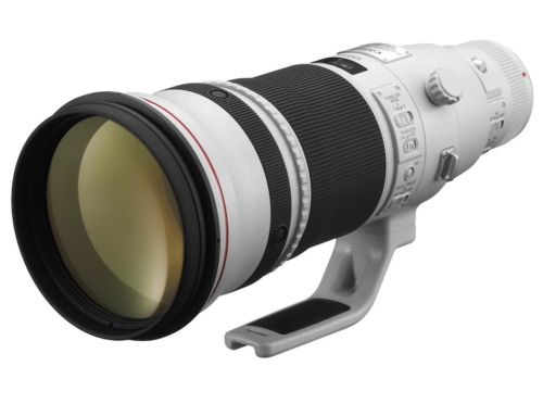 Canon RF 500mm f/4L IS Lens : First RF Mount Super Telephoto Prime