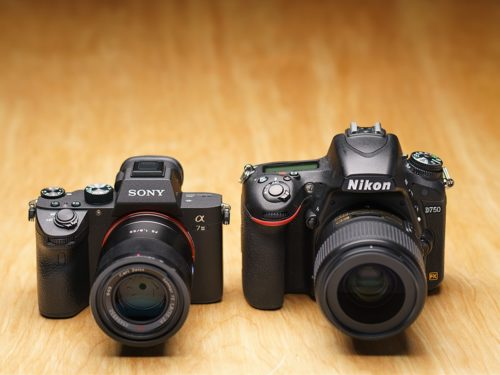Sony vs. Nikon: How to choose between two great camera brands