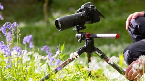 Manfrotto BeFree GT XPRO arrives for macro shooters