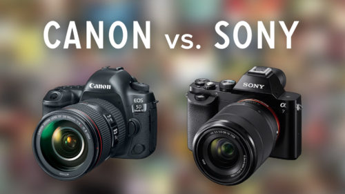 Canon vs. Sony: Which camera brand belongs in your bag?