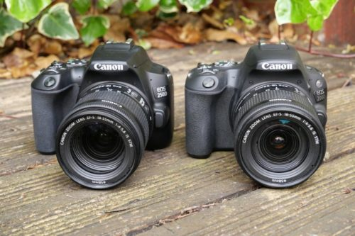 Canon 250D vs Canon 200D: which should you buy?