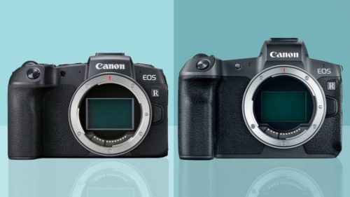 Canon EOS RP vs. EOS R: Which Canon mirrorless camera is right for you?