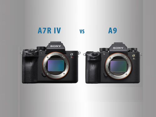 Sony A7R IV vs A9 – The 10 main differences