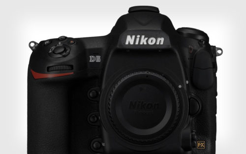 What to Expect from Nikon? (October 2019)
