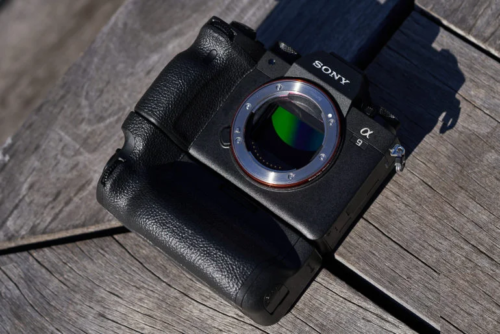 First Impressions: Sony A9 II (They Made it Better Than the Original)