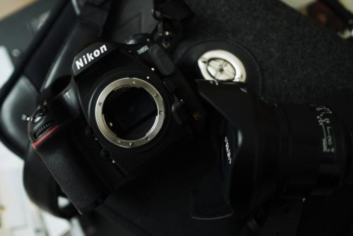3 Nikon Cameras Perfect for Landscape Photographers