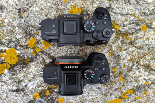 How to Set Up and Use the Sony A7 III, A7R III, A7R IV, A9
