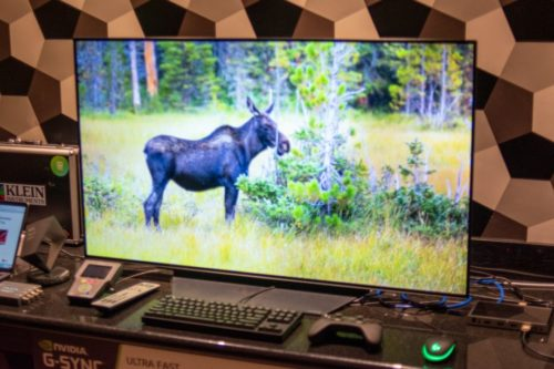 Hands on: LG CX 48-inch OLED (OLED48CXPUA) Review