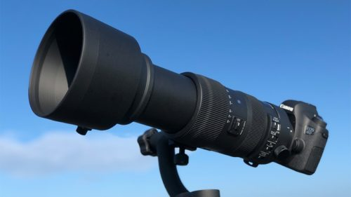 Sigma 60-600mm f4.5-6.3 DG OS HSM Sports Review