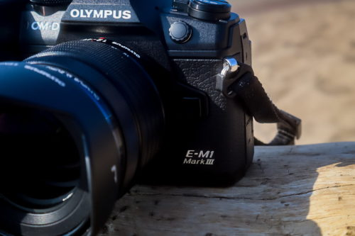 Olympus OM-D E-M1 Mark III vs. OM-D E-M1X: High-performance flagships compared
