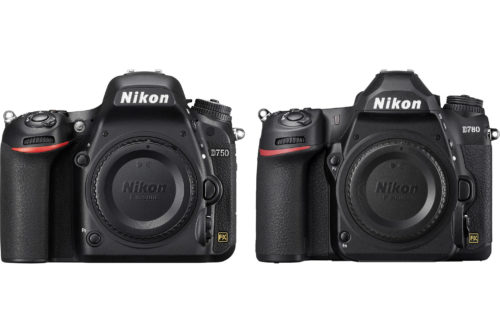 Nikon D750 vs. D780: 5 years in the making, Nikon's newest proves its worth