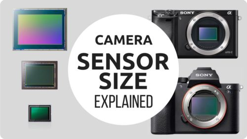 Camera Sensor Size Comparison & Explanation
