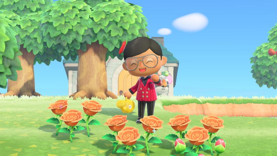 Nature Day: Everything you need to know about Animal Crossing: New Horizon's new update