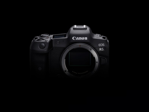 Canon EOS R5: The long game ends with a big leap