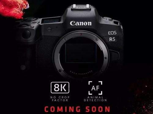 8K and then some: what the Canon EOS R5's video specs mean